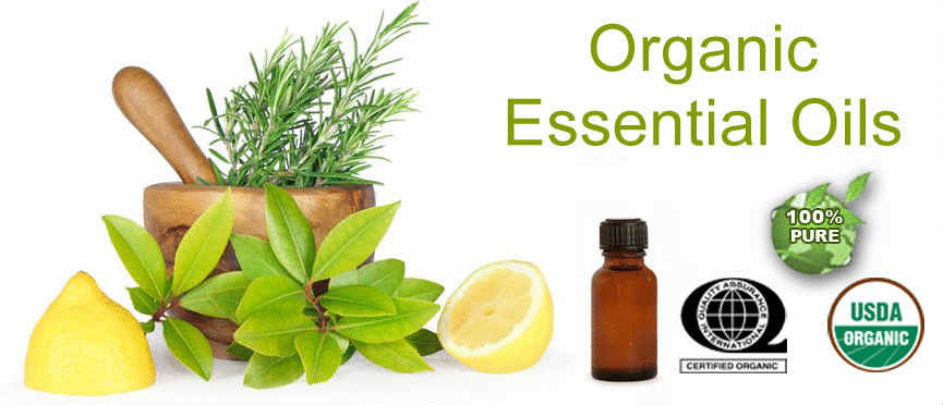 Ultimate Secret Of ( WHERE TO BUY ESSENTIAL OILS ) As A Celebrity