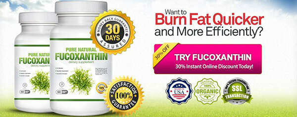 Fucoxanthin Burns Stubborn Belly - Fat Be Confident with Your Body!