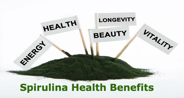easy body fit SPIRULINA Benefits, Powder - Spirulina Health Benefits