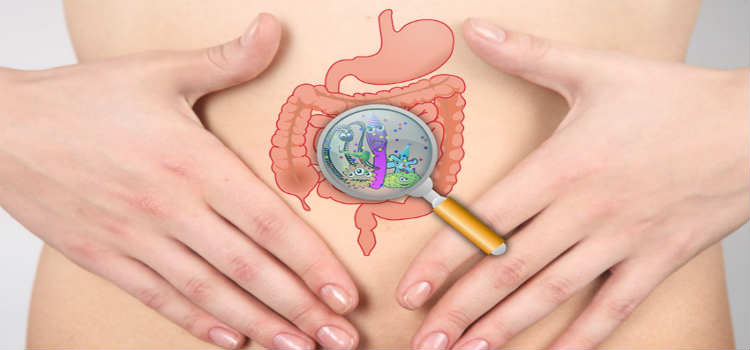 BEST PROBIOTIC FOR WOMEN - Benefits of Probiotics for Women