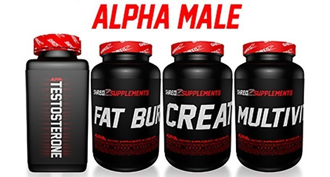 SHREDZ REVIEW