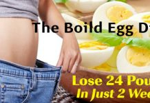 The Boiled Egg Diet Can Help You Lose up to 24 Lbs in Just 14 Days