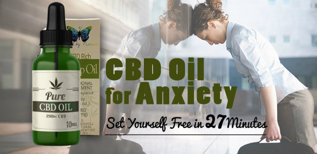 BEST CBD OIL FOR ANXIETY Treatment, Studies, Dosage & Success Stories