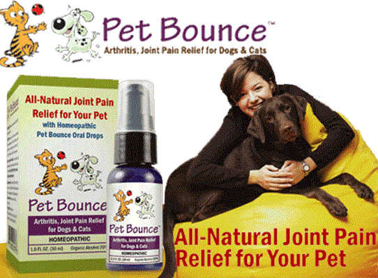 Pet Bounce MultiVitamin: Quality Vitamins For Your Four Legged Children